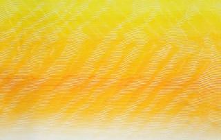 Akribeia 23 - 120 x 120 cm - huile sur toile - 2020